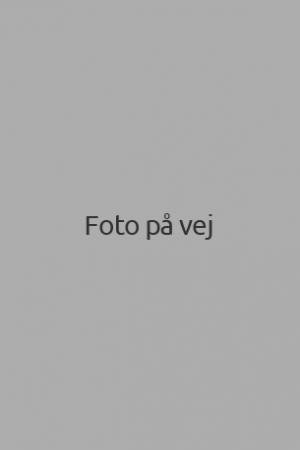 foto-paa-vej-