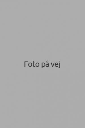 foto-paa-vej
